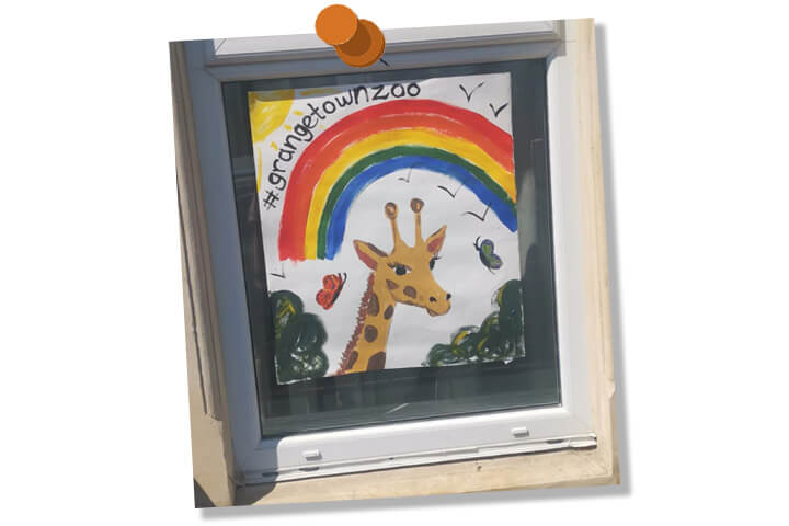 rainbow art, cardiff, grangetown zoo