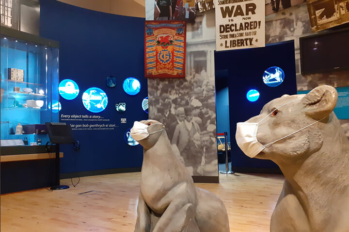 Animal wall replica seal and lion in museum gallery. They are wearing surgical facemasks.